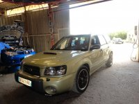 Forester stage 3